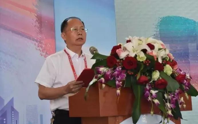 湖南省委宣传部副部长杨金鸢主持开幕式